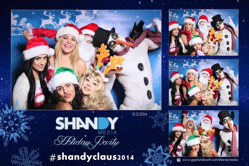 Shandy media 2014