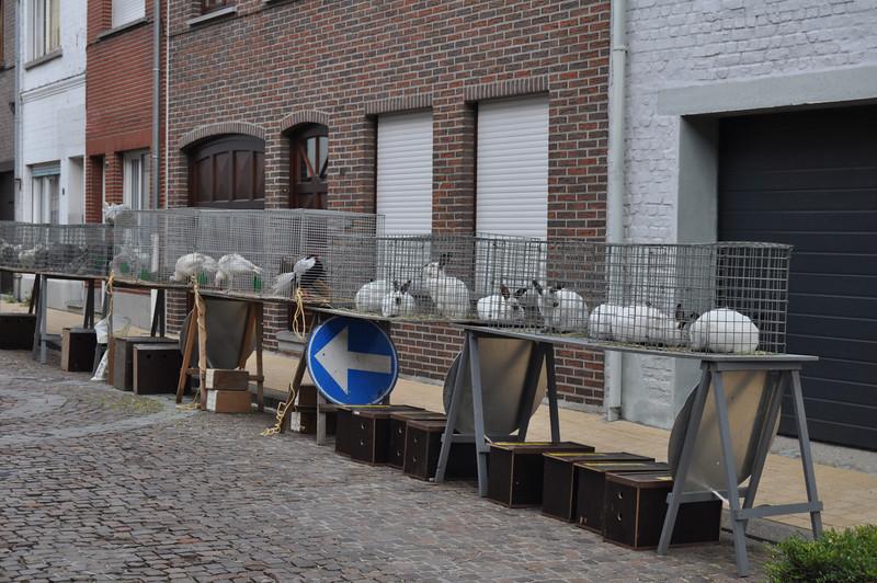 2011-08-07 9 kermis in de Borgt.JPG