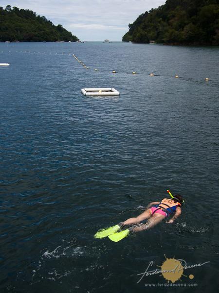 The snorkeling area near the pontoon. Pulau Sapi and Pulau Mamutik nearby