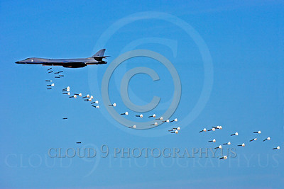 U.S. Air Force Rockwell B-1 Lancer Ordnance Release Pictures
