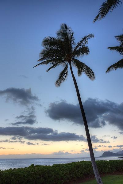 SHP_9454_Default-Oahu.jpg
