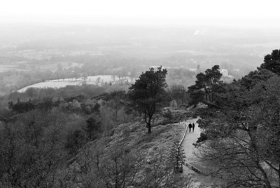 leith hill's seasons