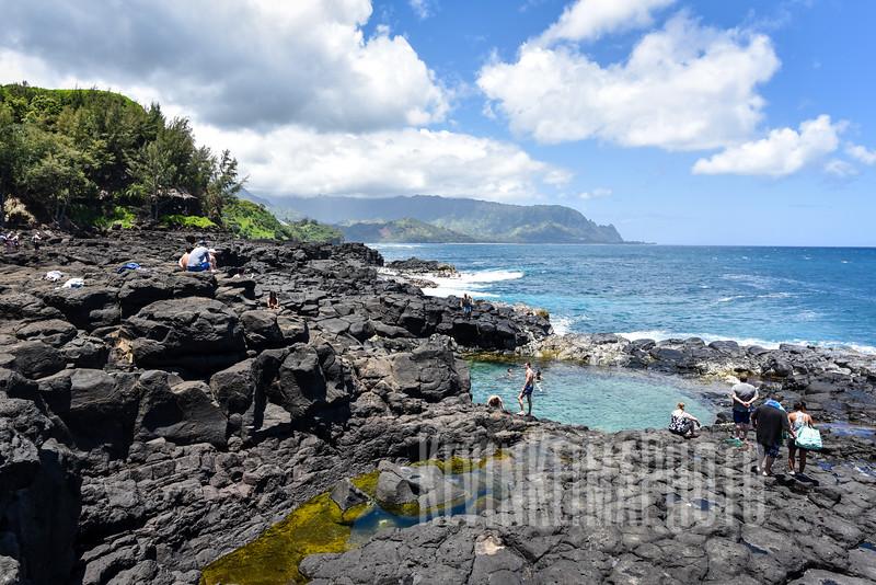 Kauai2017-250.jpg