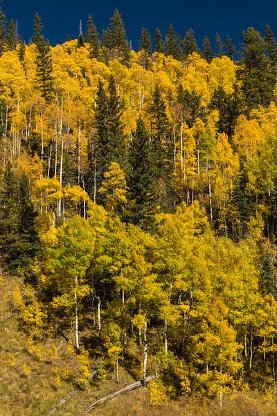 Colorado19_5D4-1535.jpg