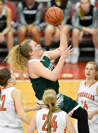 Elyria Catholic falls to Versailles in state semifinals