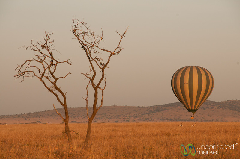 Hot Air Balloon Rising - Serengeti, Tanzania