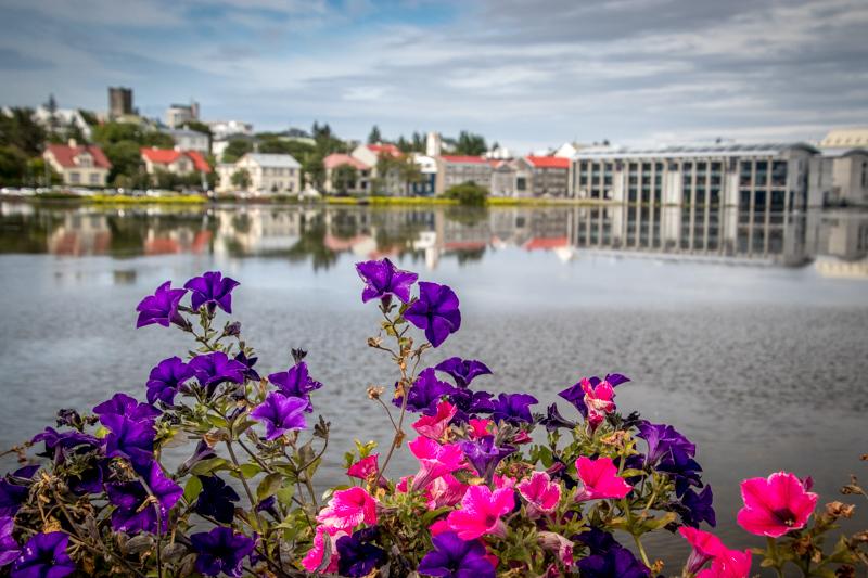 August 3 - Reykjavic City Hall and surroundings in Hljómskálagaròur Park.jpg
