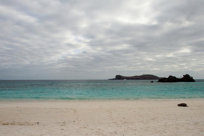 Gardner Bay, Espanola, Galapagos, Ecuador (11-21-2011) - 590.jpg