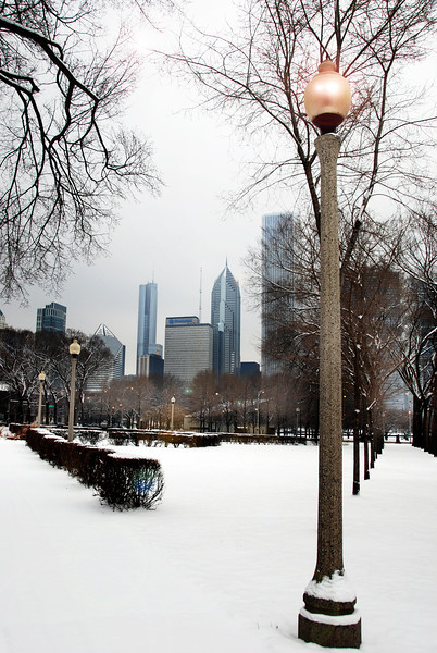 Chicago in the winter .jpg