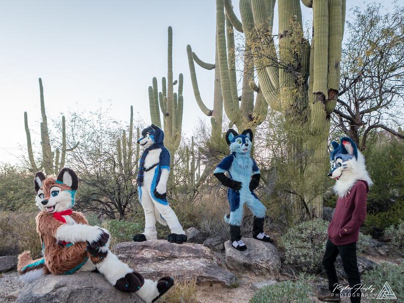 Arizona New Years 2019-058-HDR.jpg