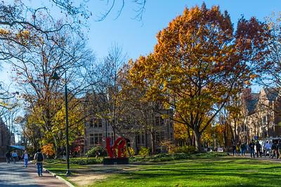University & College Campuses
