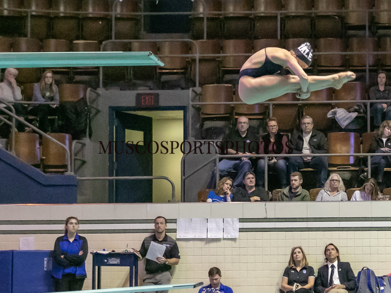Swimming-diving vs Seton Hall_1175.jpg
