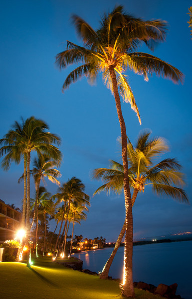 Maui-1.jpg