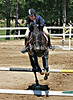 Fieldcrest Farm Horse Show, June 24, 2007 :