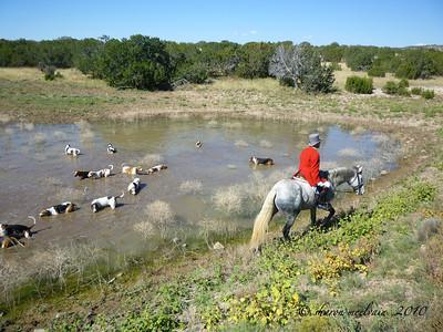 Caza Ladron Opening Hunt 2010