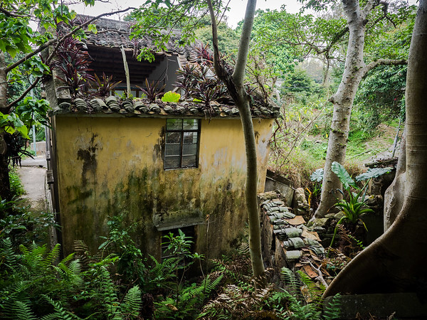 The Abandoned Village of Yim Tin Tsai (Apr 2017)