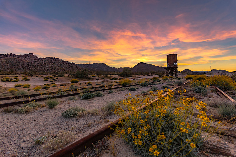 Colorful Sky at Sunset and Wildflowers at Dos Cabezas Siding