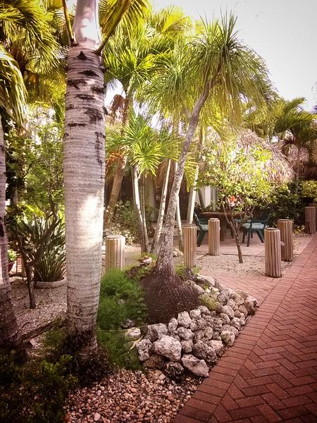 IMG_Florida (40).jpeg