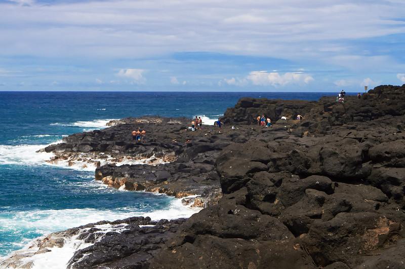 Hawaii802.jpg