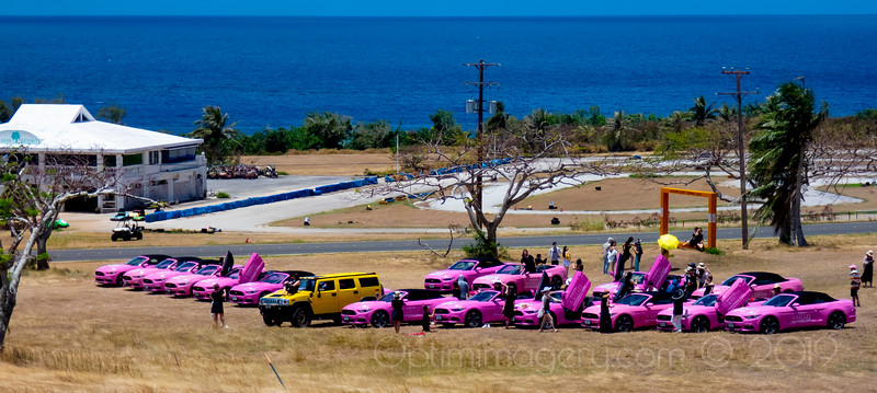 APRIL 20, 2019: OUT AND ABOUT. PINK CARS, YELLOW CARS, LADY IN RED, BANZAI