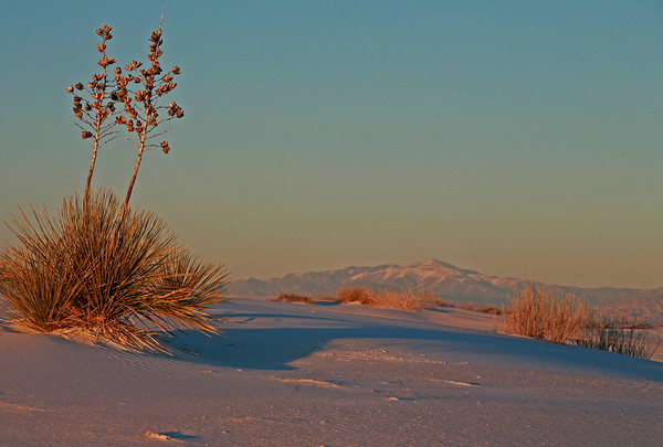White Sands National Monument. Decmber 2013