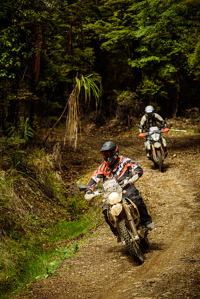 2019 KTM New Zealand Adventure Rallye (1306).jpg