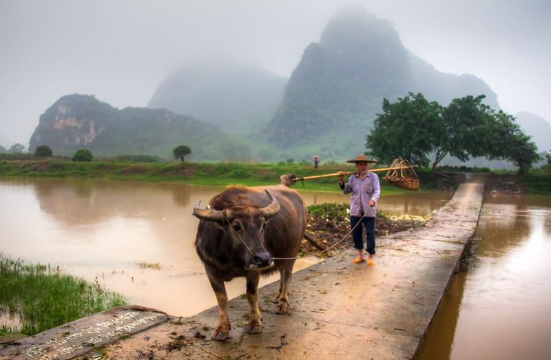2012 china fisherman & old man w- cow-4.jpg