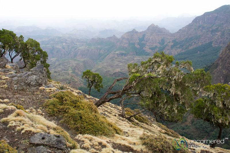 Simien Mountain Views - Northern Ethiopia