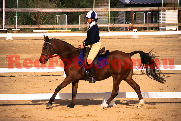 Darlington Pony Club Dressage