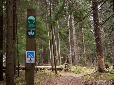 Hämmäauteensuo Trail 2016