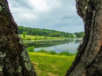 Trostle Pond