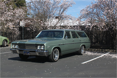 Biquette, our 1965 Buick Special wagon