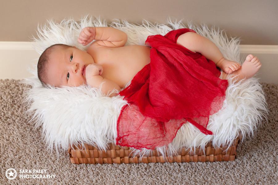 newborn baby lifestyle portraits