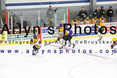 Boys Hockey vs Rochester Lourdes