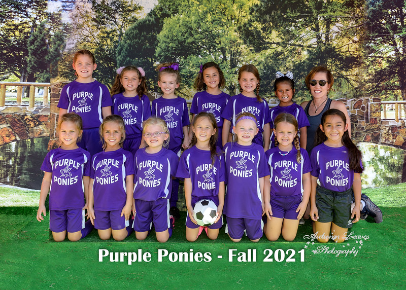 20211009 - #M19 1G Purple Ponies - Toudouze
