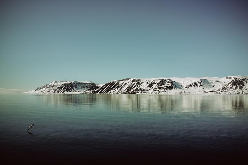 Svalbard-2013-35.jpg