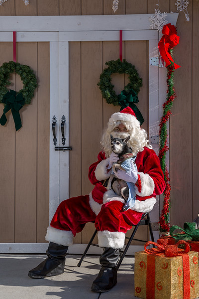 Pet Pictures With Santa-95.jpg