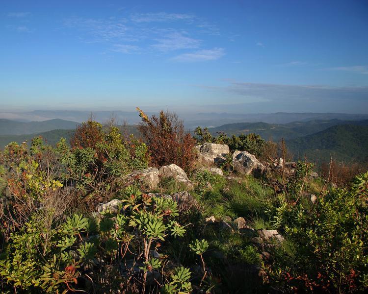 Transkei hills copy.jpg
