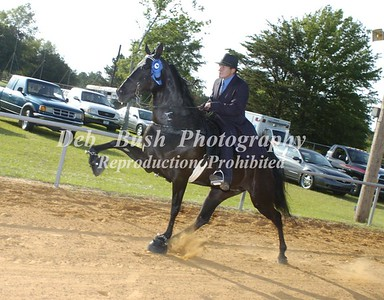 CLASS 18  AGED MARES & GELDINGS OPEN CANTER