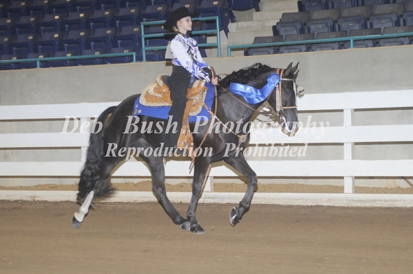 CLASS 2  COUNTRY PLEASURE JUVENILE 17 & UNDER
