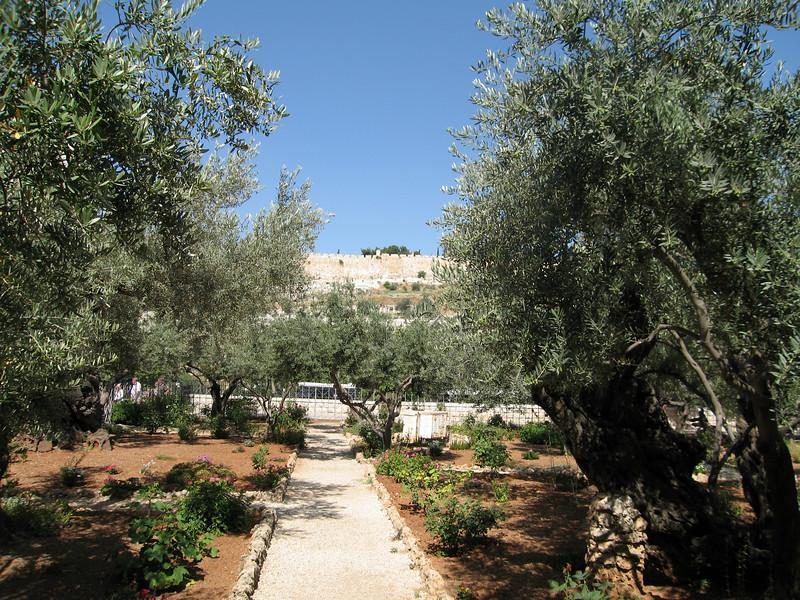 still at the Garden of Gethsamane