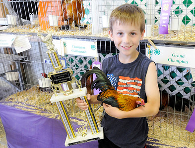 Tuesday at the 2017 Madison County 4-H Fair