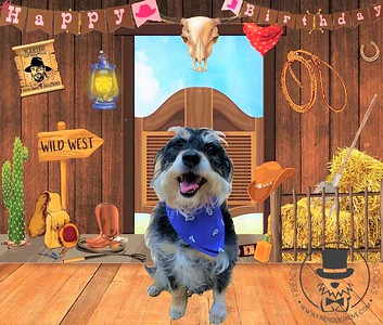 Bella's 6th birthday!