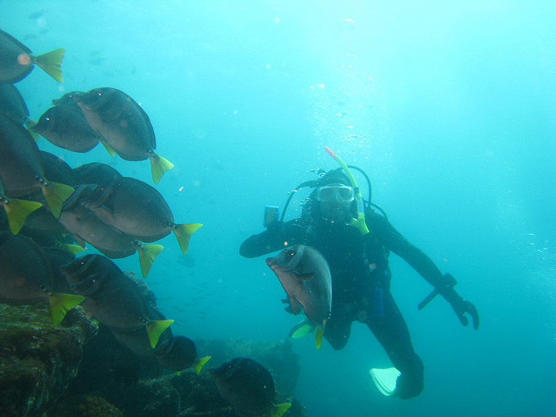 Diving in the Galapagos (97 of 392)