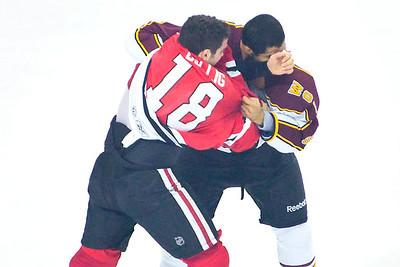 AHL 2010/11
