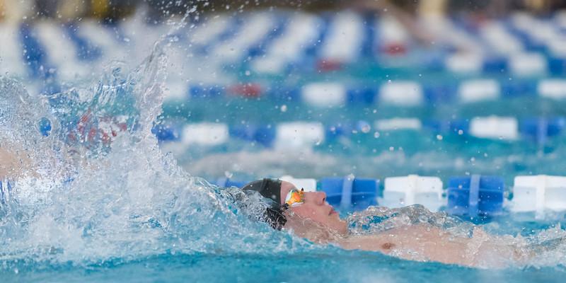 2018_KSMetz_Feb09_SHS Centenial League_Swimming_NIKON D5_2141.jpg