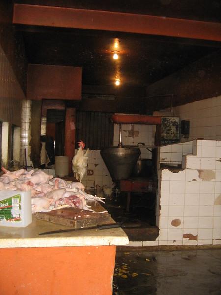 chicken-coop_1808790592_o.jpg