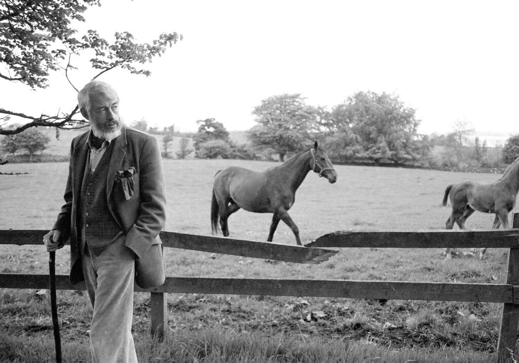 """. In this Aug. 1, 1982 photo, Irish-American novelist and playwright J.P. Donleavy inspects show horses at his home in Mullingar, Ireland. Donleavy, whose ribald debut novel \""""The Ginger Man\"""" met scorn, censorship and eventually celebration as a groundbreaking classic, has died at age 91. Donleavy, a native New Yorker who lived his final years on an estate west of Dublin, died Monday, Sept. 11, 2017, in Ireland. (AP Photo)"""