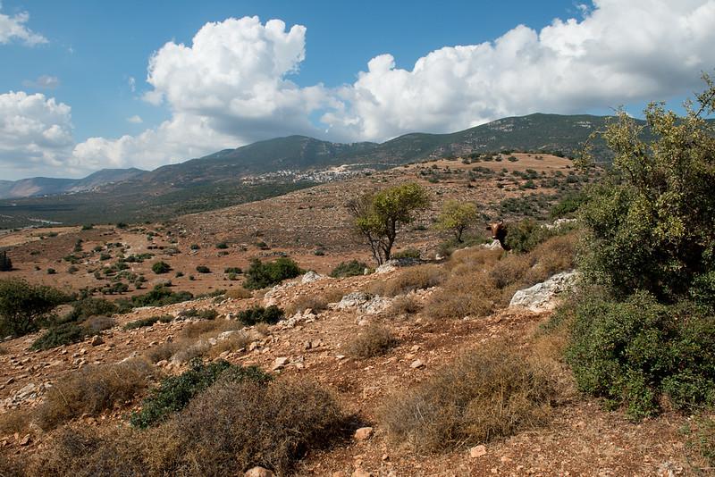 Israel-7468.jpg