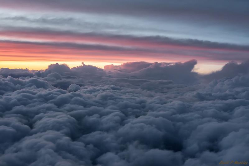 Flight Fluff